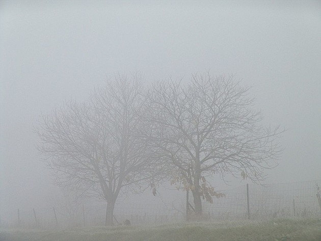 Danas zbog magle na snazi žuti meteoalarm