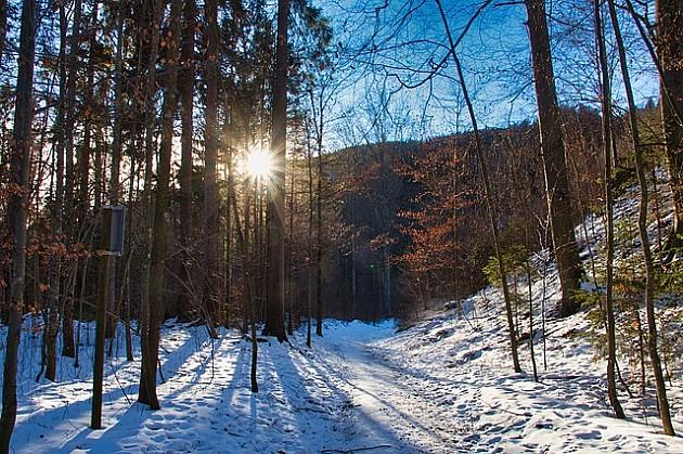 Nedeljno pešačenje Fruškom gorom