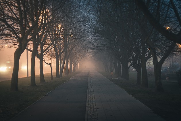 Kvalitet vazduha može da doprinese pogoršanju zdravlja