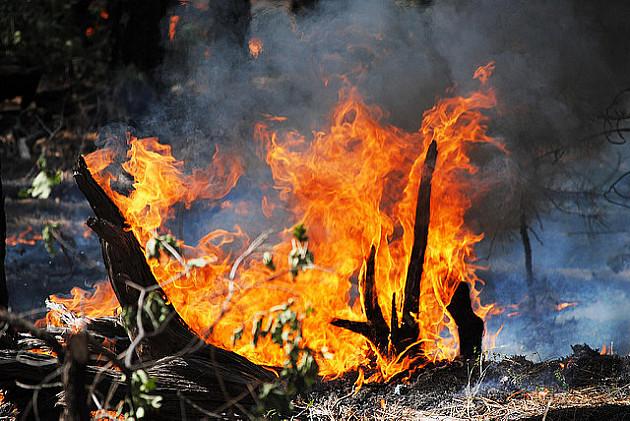 Česti požari, ne palite biljni otpad
