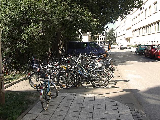 Novi Sad svetska prestonica zimskog bicikliranja