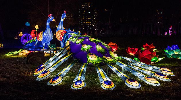 Kineski festival svetla i ove godine u Novom Sadu