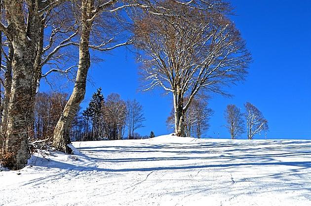 Sutra planinarenje po snežnim stazama