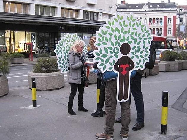 Počelo prikupljanje potpisa za zaustavljanje seče na Fruškoj gori