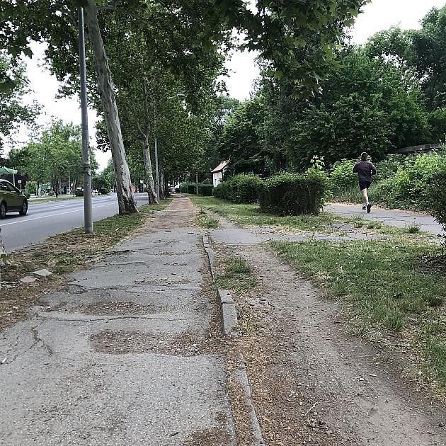 Grad Novi Sad najavio rekonstrukciju biciklističkih staza u Futoškoj ulici