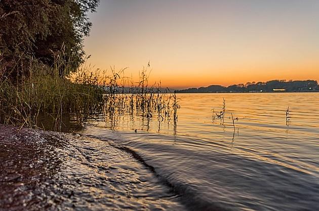 Velika naftna mrlja u Dunavu kod Novog Sada