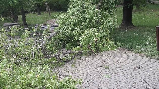 Kratkotrajno nevreme pogodilo Novi Sad