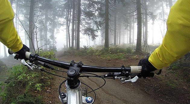 Najbolji planinski biciklisti sutra voze na Fruškoj gori