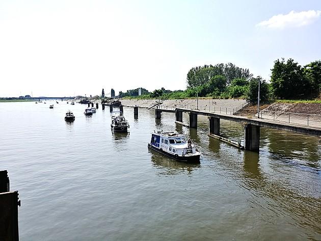 """80 brodića u regati """"Vode Vojvodine"""" 2019"""
