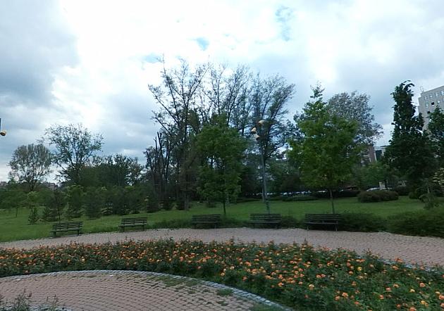 Večeras protest zbog uništavanja parkova u Novom Sadu