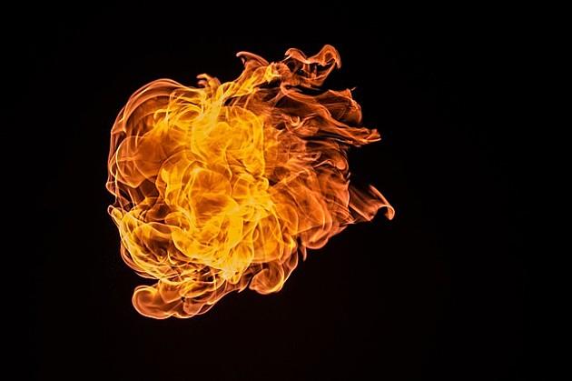 Veliki požar progutao odgajivačnicu dobermana kod Tekija