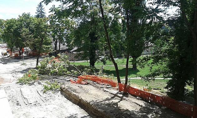 Peticija za očuvanje parka kod Muzeja Vojvodine danas i u Zmaj Jovinoj ulici