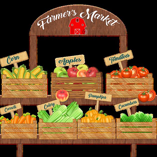 Grad pomaže proizvođače organske hrane