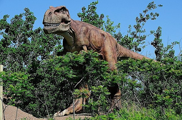 """Dino park"" gotov do 10. septembra"