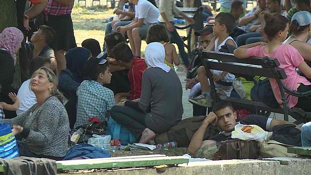 Novosađani za dva dana prikupili pola tone pomoći za migrante