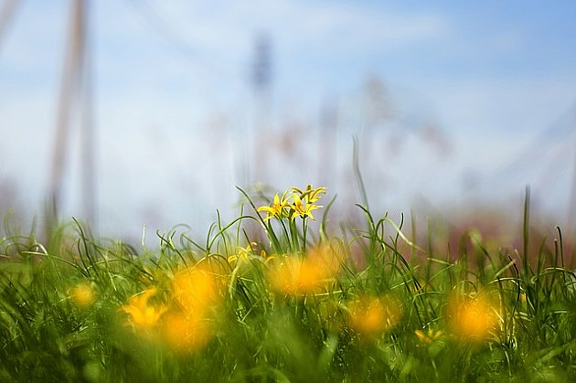 Nakon sunčanog i toplog dana, moguće osveženje sa pljuskovima