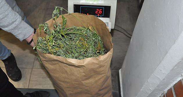 Policija zaplenila više od 10 kg marihuane, 500g heroina...