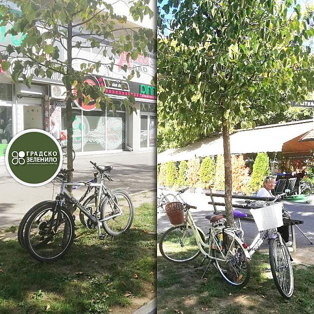 Novosađani, ne vezujte bicikle za drveće