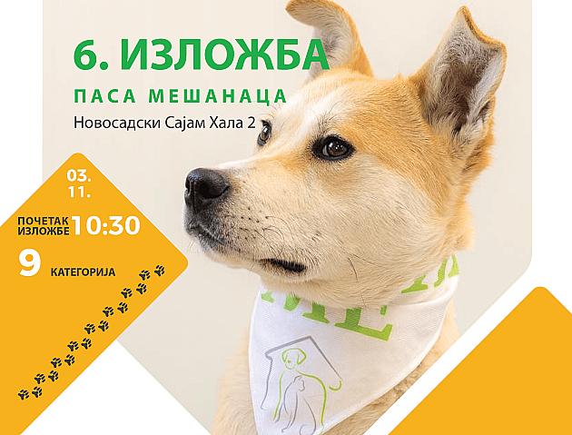 Izložba pasa mešanaca sutra na Novosadskom sajmu