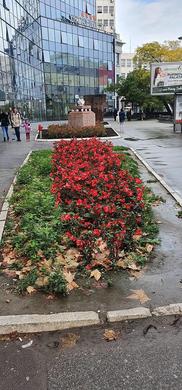 Spomenik porodice Čenazi ponovo na Bulevaru Mihajla Pupina