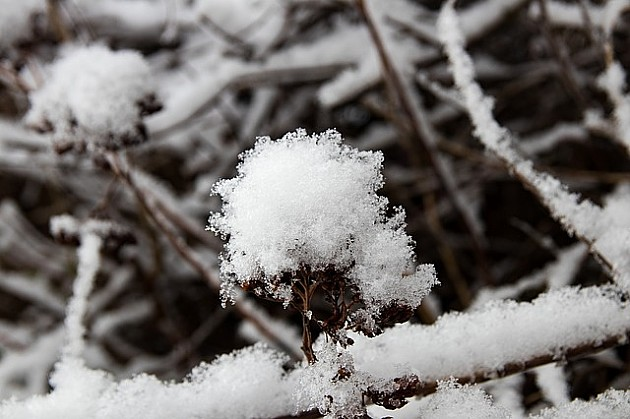 Pred nama hladna sedmica, sutra slab sneg