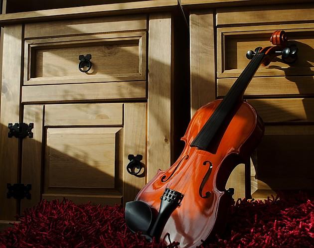 Traži se vlasnik violine ostavljene u Sremskoj Kamenici